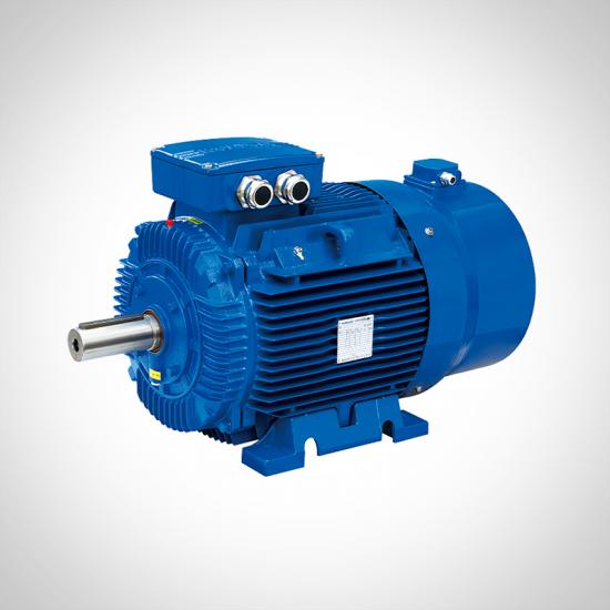 High Efficiency Electric AC Motors Inverter Duty 3 Phase