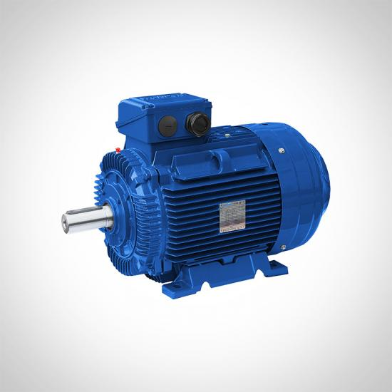 IE4 AC Electric Motors Cast Iron